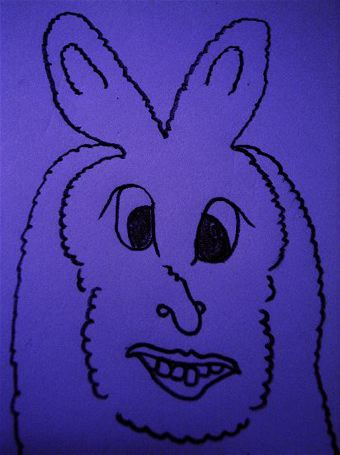 ウサギの人